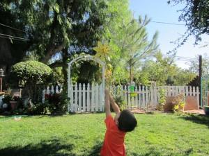 garden happiness