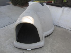 pet igloo