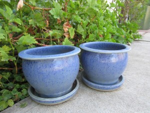 blue matching flower pots