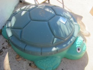Green Turtle Sand Box